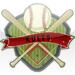 Baseball & Softball Rule Books
